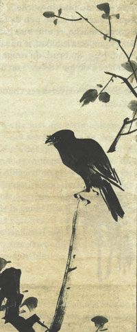Kyotocrow