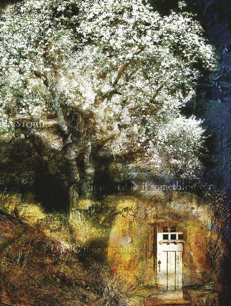 The Tree of Doors by Meg Fox