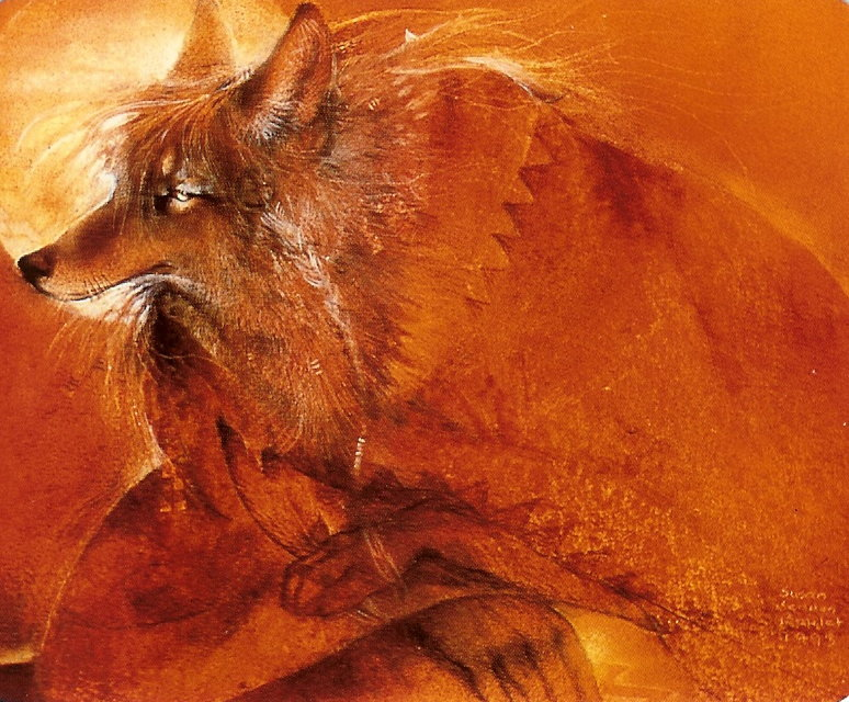 Coyote by Susan Seddon Boulet