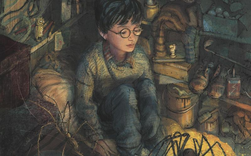 Harry Potter by Jim Kay