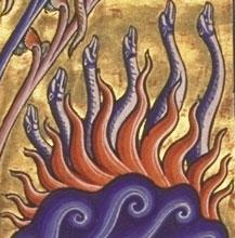 SalamanderAB