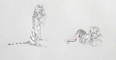 Tigerskin_2