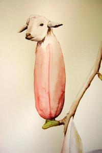 Goat_magnolia_2