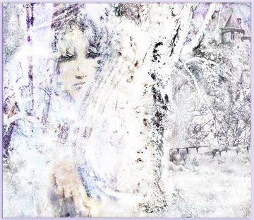 The_snow_queen_by_meg_fox